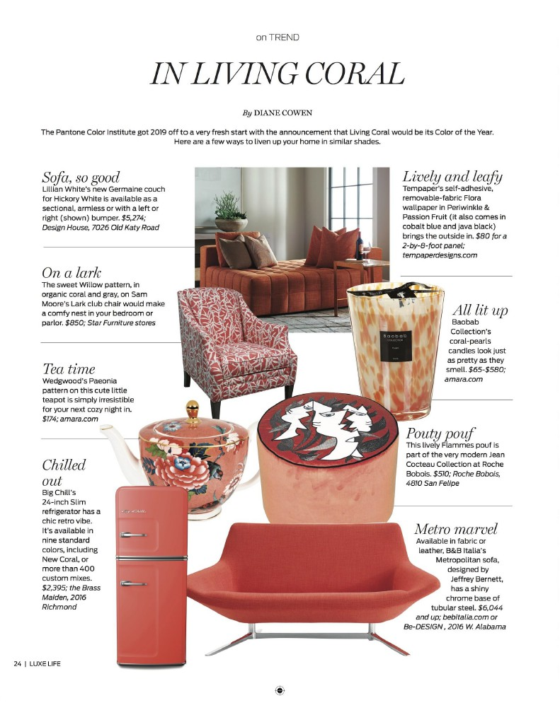 Houston Chronicle's Luxe Life Magazine – March 2019