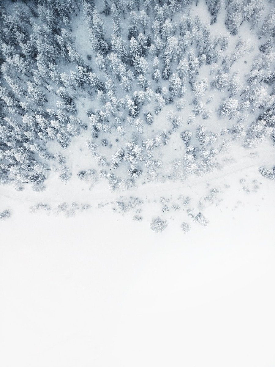A Canvas as Pure as Snow